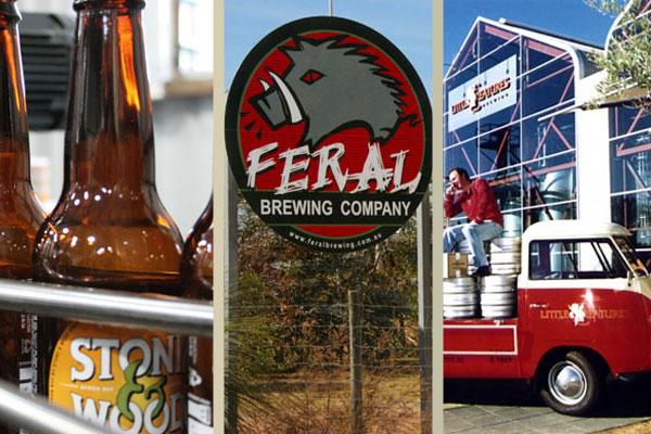 H100 Craft Beers of 2013