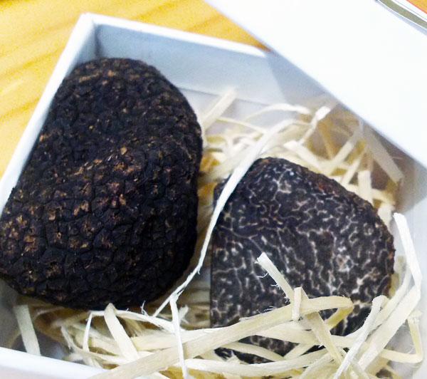 Truffles-Pia