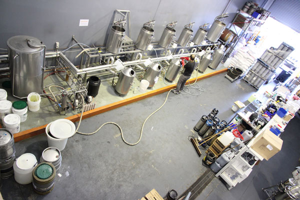 Bacchus-Brewing-beer-australia-2
